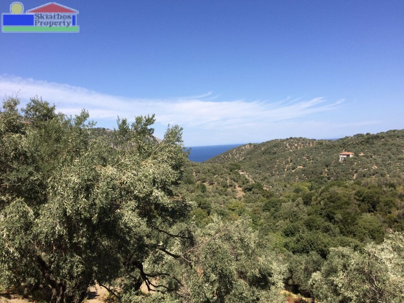 LAND FOR A BUILDING IN A QUIET AREA WITH LONG DISTANCE SEA VIEWS