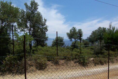 Pounta Land 1