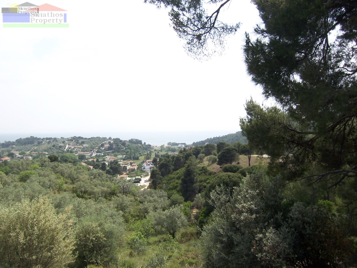 LAND WITH STUNNING PANORAMIC VIEWS AND A BUILDING LCENSE FOR 2 VILLAS WITH POOLS