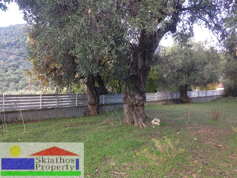 PLOT WITH A VIEW CLOSE TO SKIATHOS TOWN