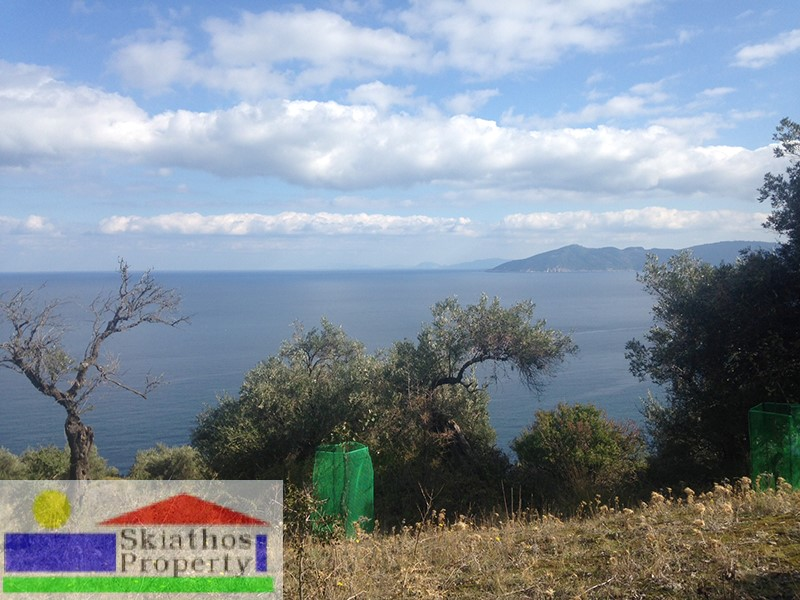 PLOT IN LEHOUNI WITH STUNNING VIEWS AND A BUILDING