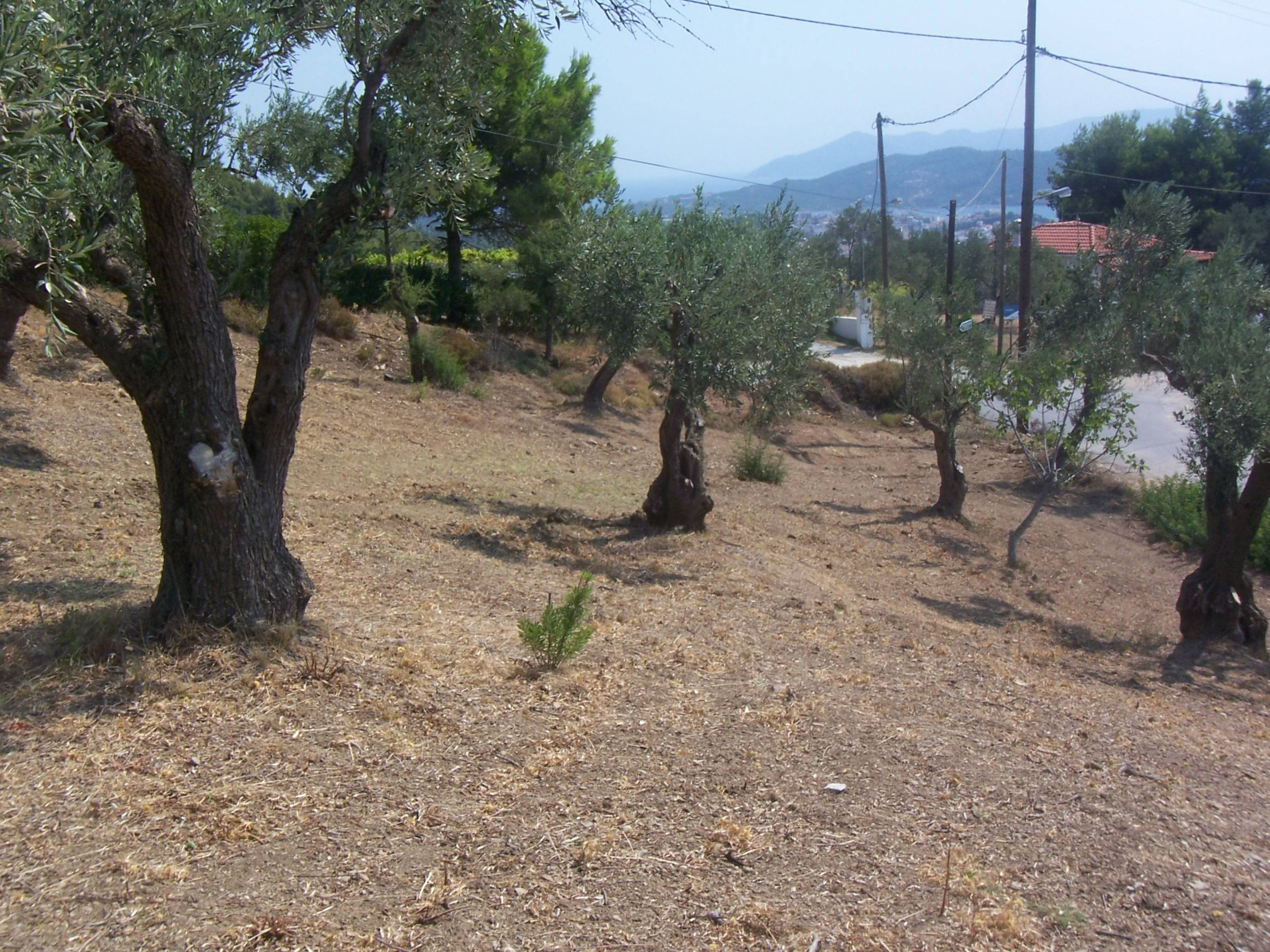 PLOT OF LAND WITH BUILDING PERMIT & SEA VIEWS